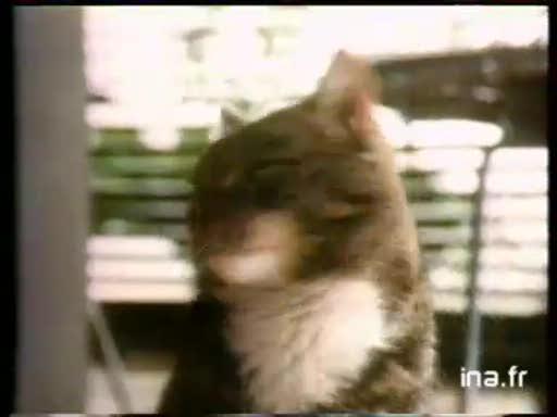 Pub Brekkies Croquettes (1989)