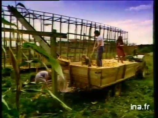 Pub Epi d'or Huile de Maïs (1982)