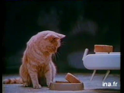 Pub Fido Chat (1989)