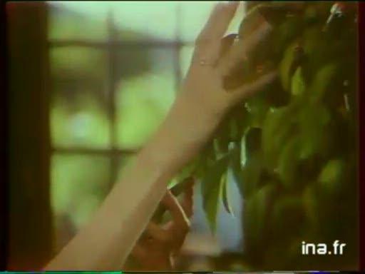 Pub KB Engrais Liquide (1980)